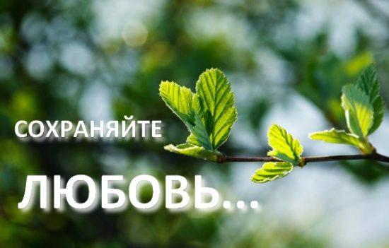 Продолжайте сохранять любовь друг к другу... трагические новости из Киева