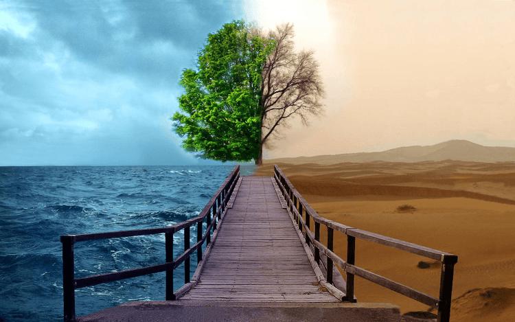 Куда направлена твоя жизнь? Как ход наших мыслей определяет наше будущее...