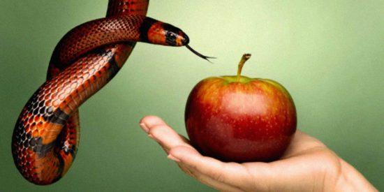 Была ли физическая смерть до греха Адама и Евы?